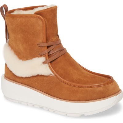 Fitflop Nyssa Genuine Shearling Chukka Boot, Brown