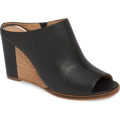 Linea Paolo Gaia Wedge Sandal, Black