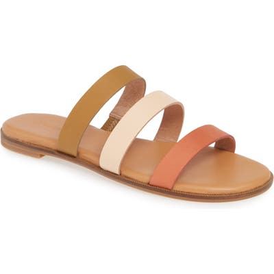 Madewell The Ilana Colorblock Slide Sandal, Brown