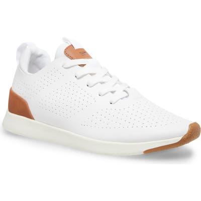 Steve Madden Royale Sneaker, White