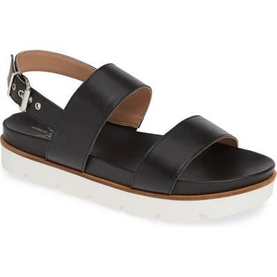 Linea Paolo Rayla Sport Sandal- Black