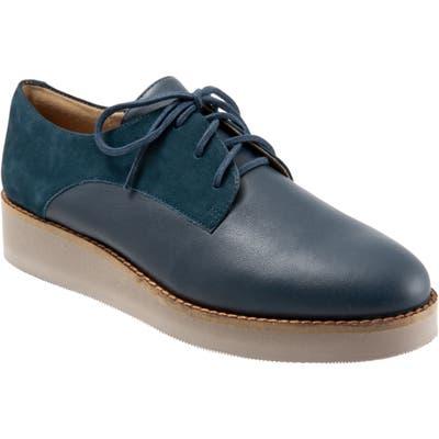 Softwalk Willis Derby- Blue