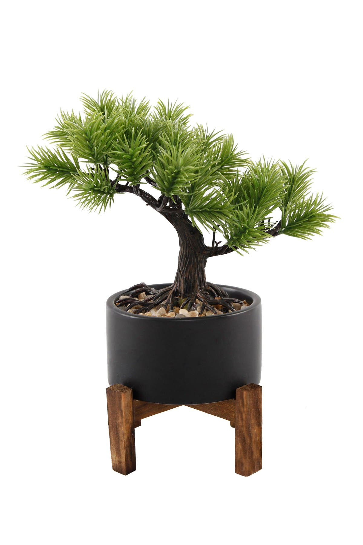 Flora Bunda 9 2 Bonsai Tree In 3 75 Ceramic Pot On Wood Stand Hautelook