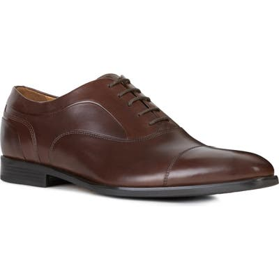 Geox New Life Cap Toe Oxford, Brown