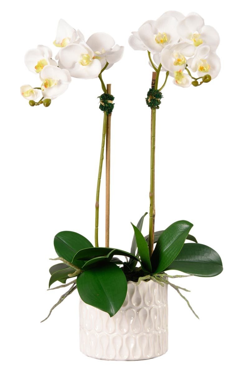 BLOOMR Casual Orchid Planter Decoration, Main, color, WHITE
