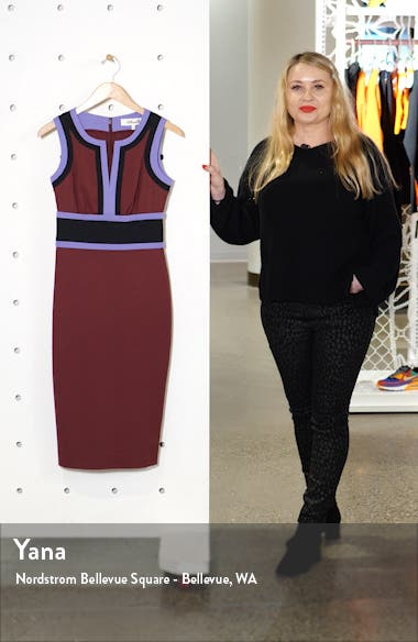 Maribel Colorblock Sleeveless Sheath Dress, sales video thumbnail
