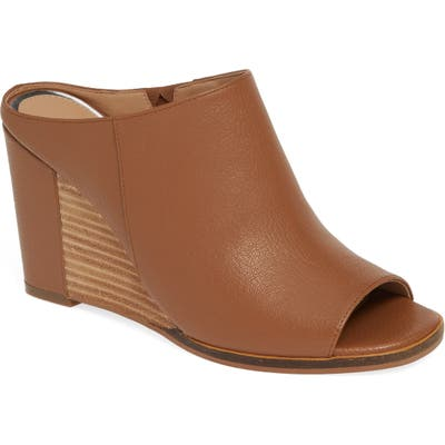 Linea Paolo Gaia Wedge Sandal, Brown