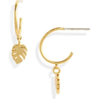 Madewell Palmleaf Charm Mini Hoop Earrings