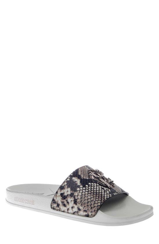 Roberto Cavalli Men's Snake-print Logo Pool Slide Sandals In Grey