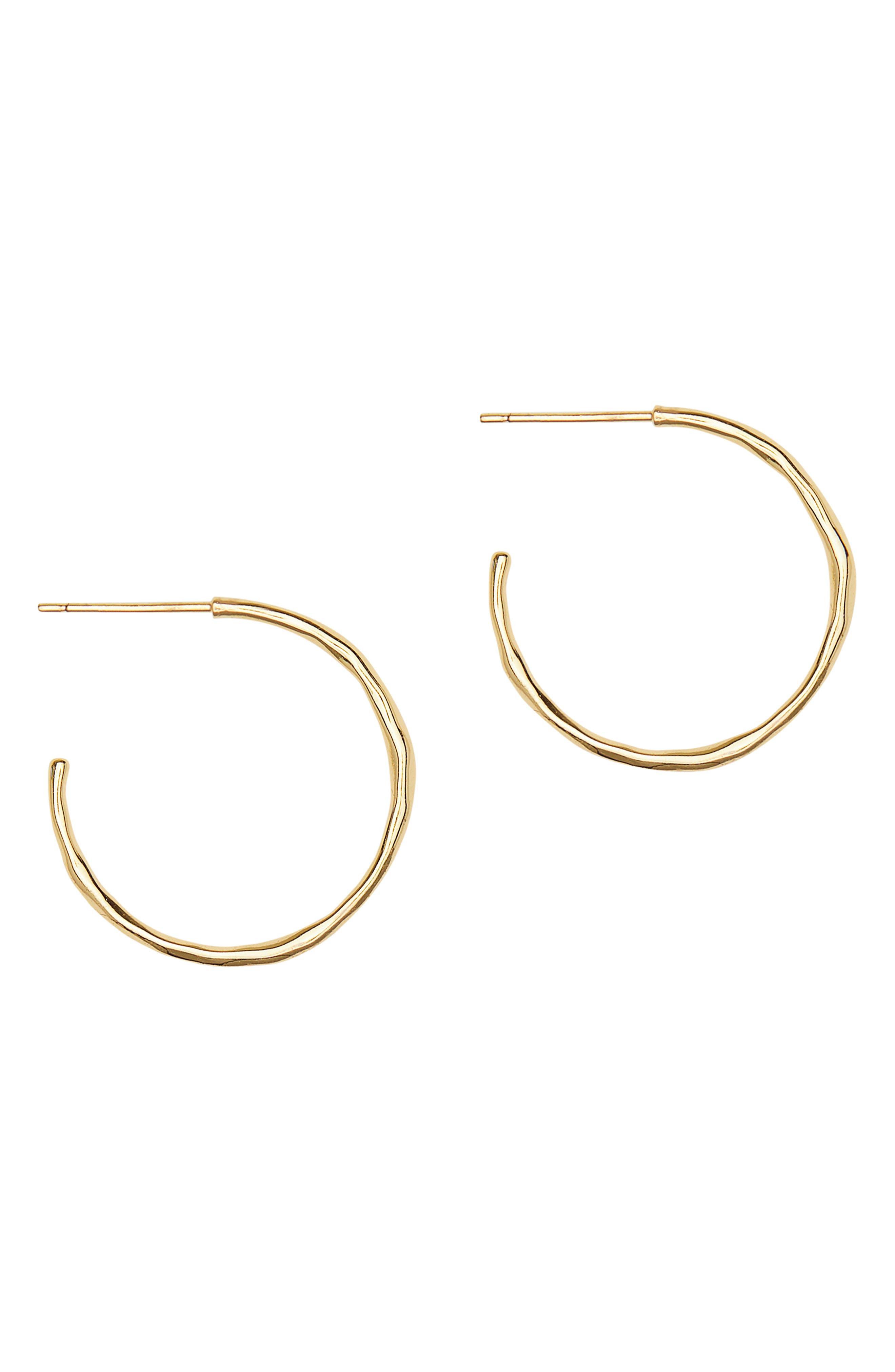 Taner Small Hoop Earrings