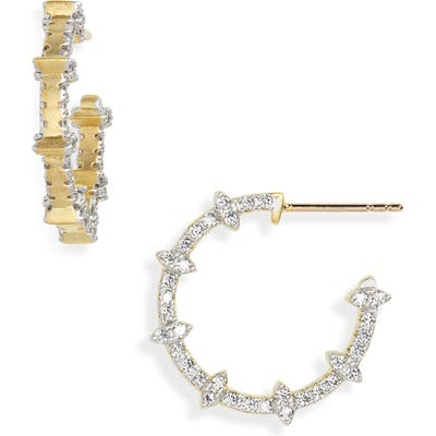 Freida Rothman Fleur Bloom Empire Hoop Earrings
