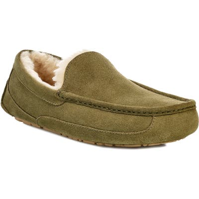 Ugg Ascot Slipper, Green