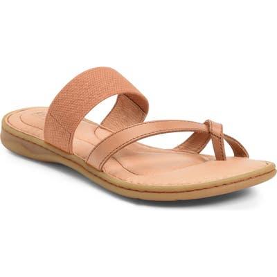 B?rn Sri Slide Sandal, Brown