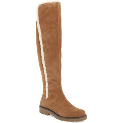 Sole Society Juno Faux Shearling Trim Boot- Brown