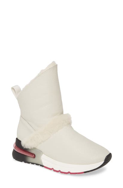 Ash Klima Genuine Shearling Boot In Off White/ Off White