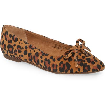 Seychelles In Theme Pointed Toe Bow Flat- Brown