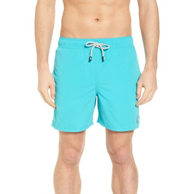 Tom & Teddy Solid Swim Trunks, Blue