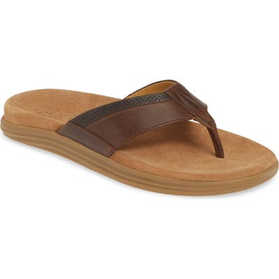 Sperry Gold Cup Amalfi Flip Flop, Brown