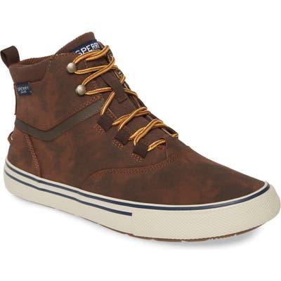 Sperry Striper Ii Storm Waterproof Sneaker Boot, Brown