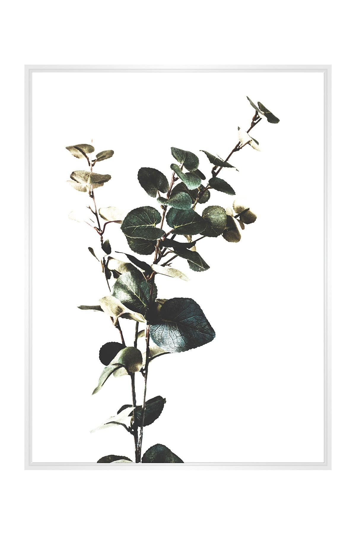 Image of PTM Images Large Botanical #13 Rectangle Canvas