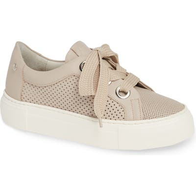 Agl Perforated Platform Sneaker, Beige