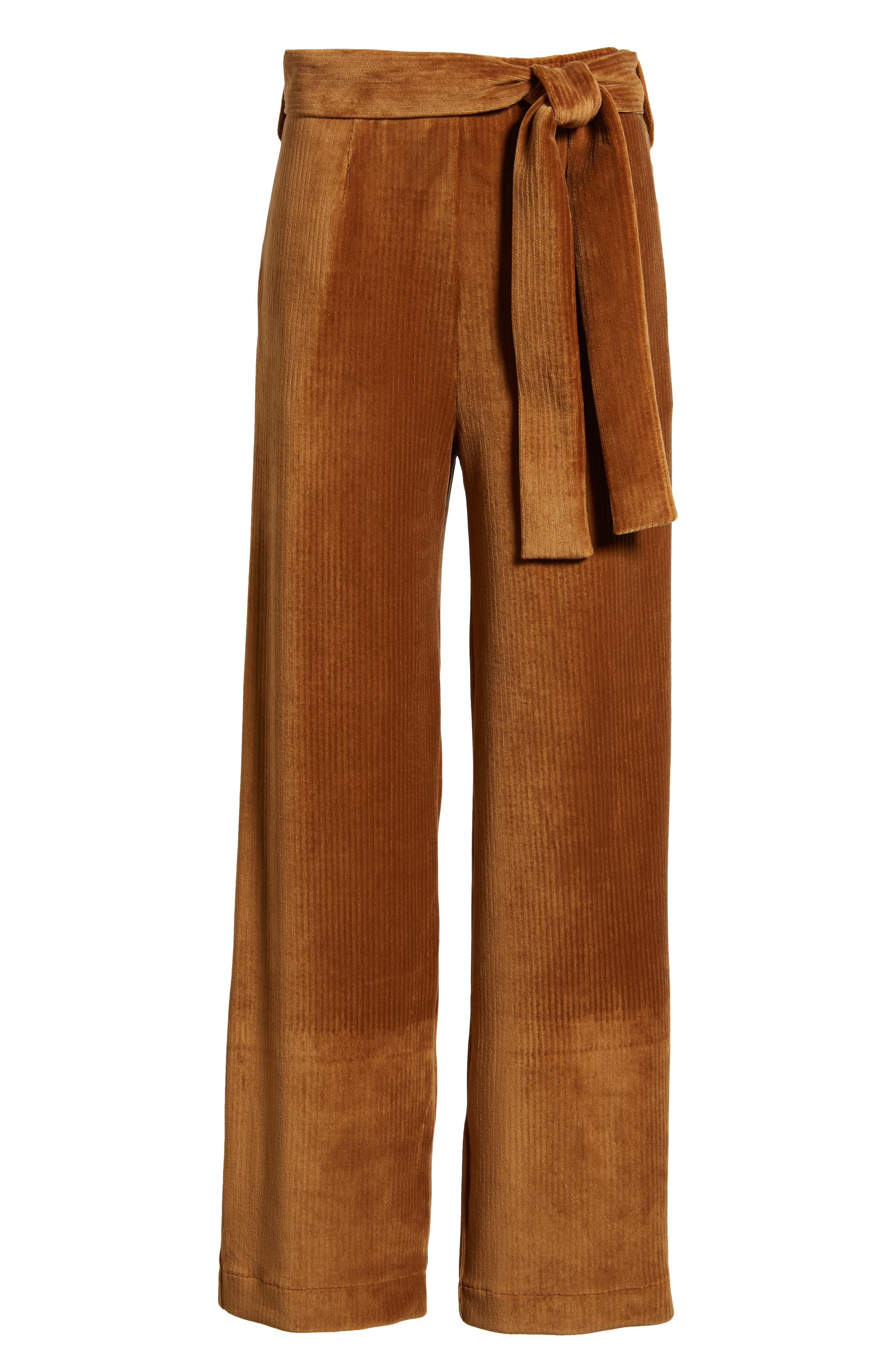 ,                             Velour Tie Waist Pants,                             Alternate thumbnail 6, color,                             200