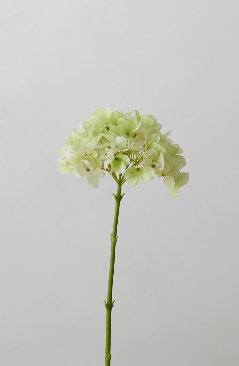 TERRAIN Faux Hydrangea Stem, Main, color, LIGHT GREEN
