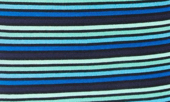 BLUE WITTY STRIPE