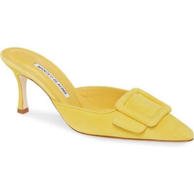 Manolo Blahnik Maysalebi Buckle Pointed Toe Mule - Yellow