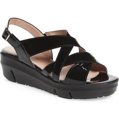 Wonders Platform Wedge Sandal, Black