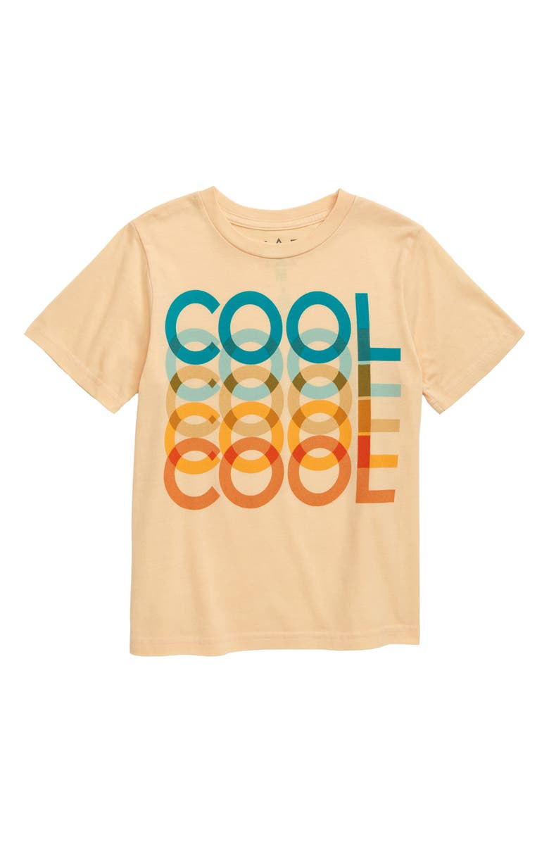 Jem Cool Graphic T Shirt Toddler Boys Little Boys