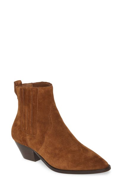 Ash Future Chelsea Boot In Russet
