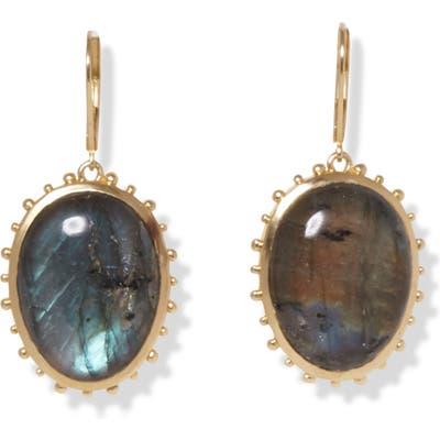 Sole Society Pendant Drop Earrings