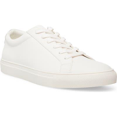 Steve Madden Coastal Sneaker- White