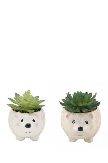 "Image of FLORA BUNDA Faux Succulent in 4.5"" Small Brown Hedgehog Ceramic Planter - Set of 2"
