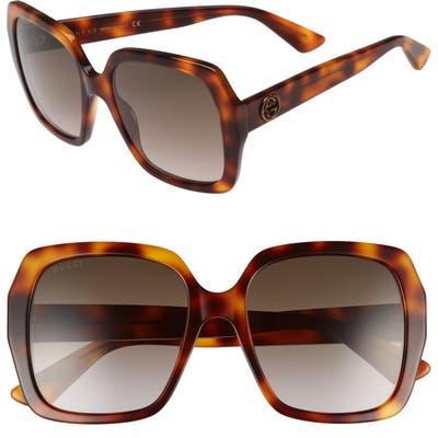 Gucci 5m Gradient Square Sunglasses - Havana/ Brown