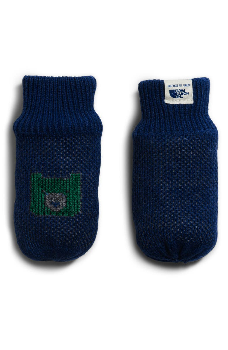 THE NORTH FACE Faroe Knit Mittens, Main, color, FLAG BLUE/ NIGHT GREEN MULTI