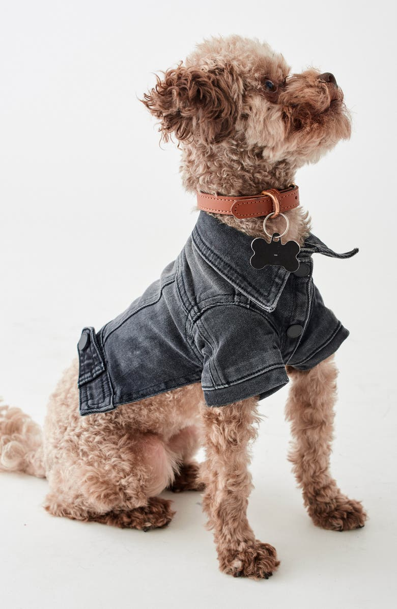 DL1961 Fido Canine Trucker Jacket, Main, color, BAD TO THE BONE