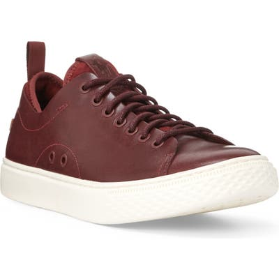 Polo Ralph Lauren Dunovin Sneaker, Brown
