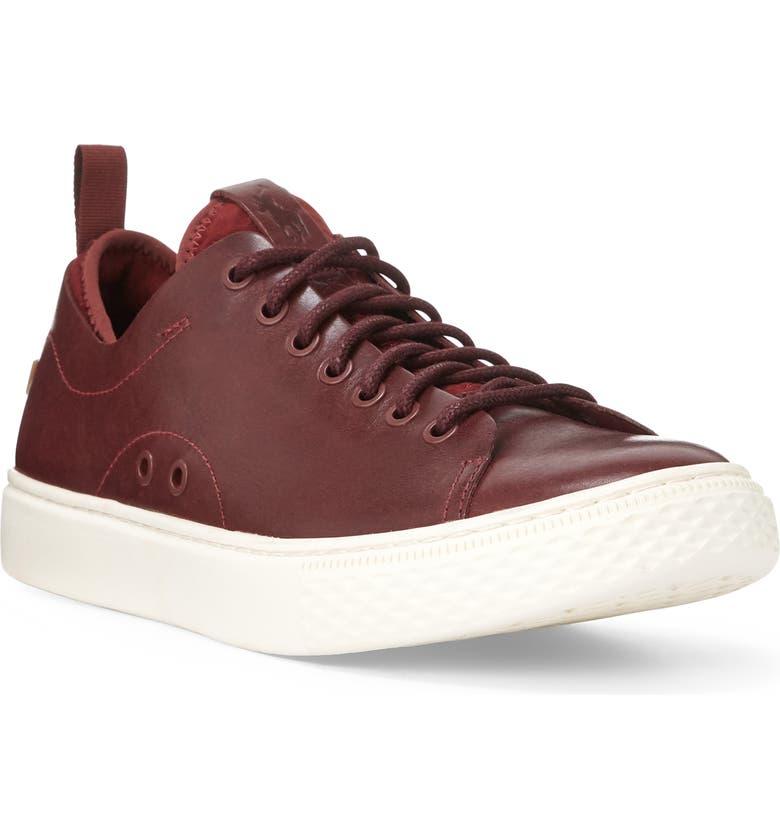 POLO RALPH LAUREN Dunovin Sneaker, Main, color, BRUNETTE LEATHER