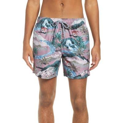 Ted Baker London Tasmane Tiger Slim Fit Swim Trunks, Pink