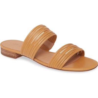 Madewell The Meg Slide Sandal, Brown
