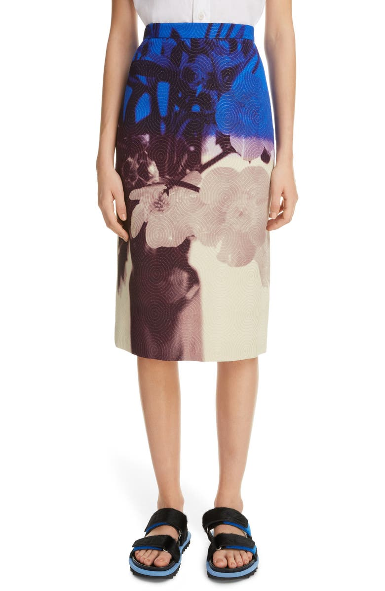 santon-pencil-skirt by dries-van-noten