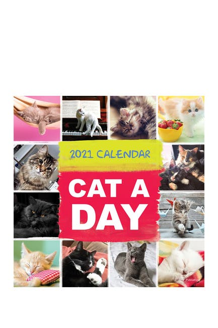 Image of TF Publishing 2021 Cat-A-Day Wall Calendar