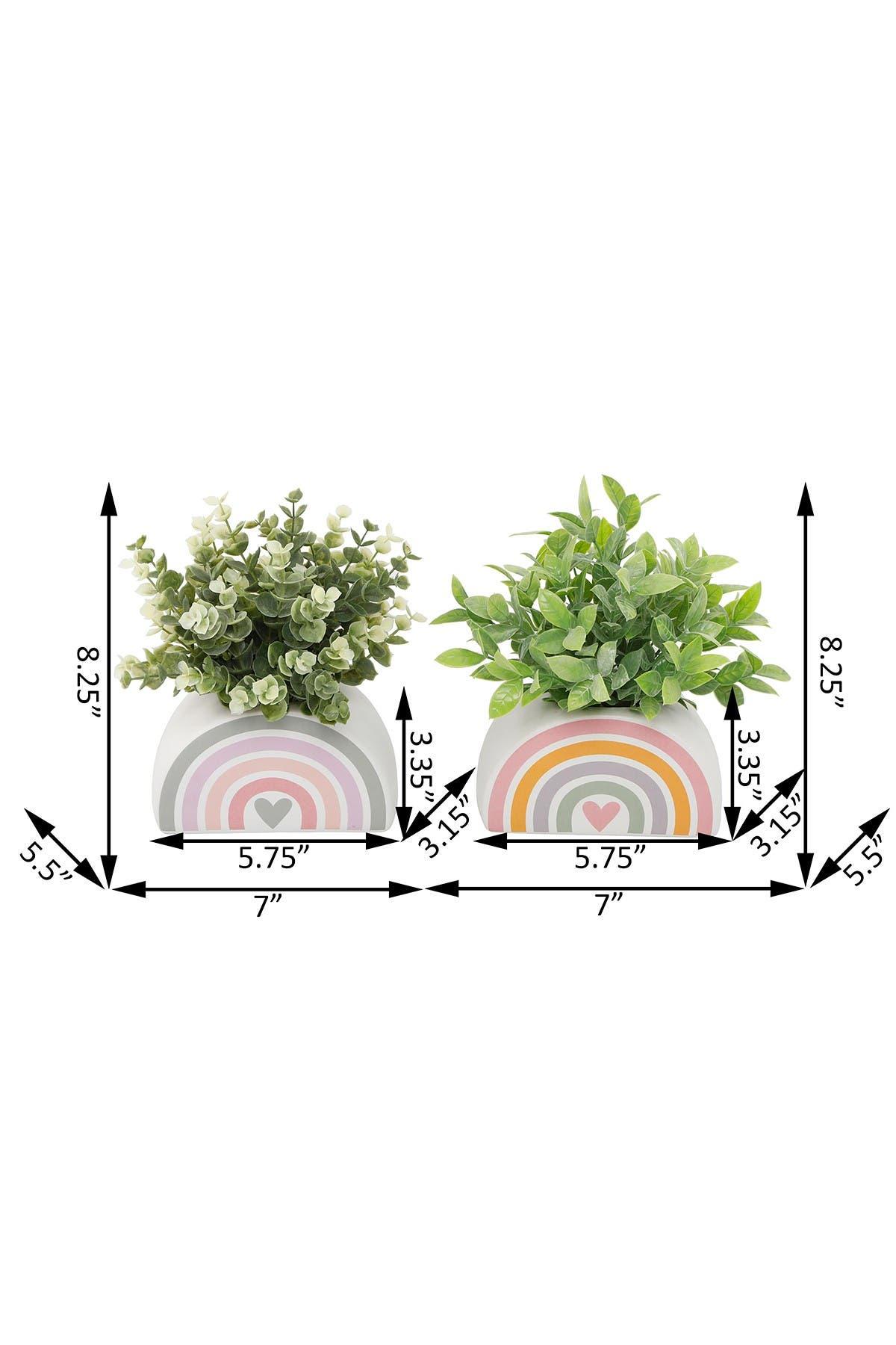 "Image of FLORA BUNDA Eucalyptus & Tea Leaf in 5.75"" Rainbow Pot, Set of 2"