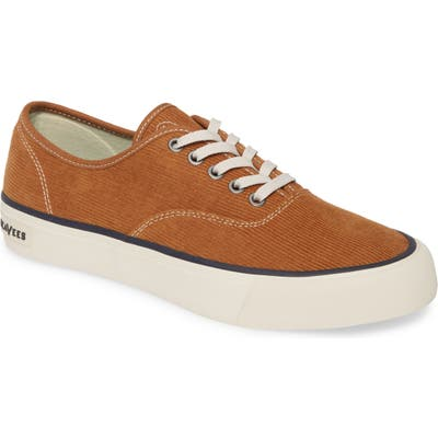 Seavees Legend Cordies Sneaker- Brown