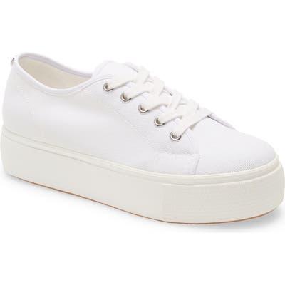 Steve Madden Elore Platform Sneaker- White