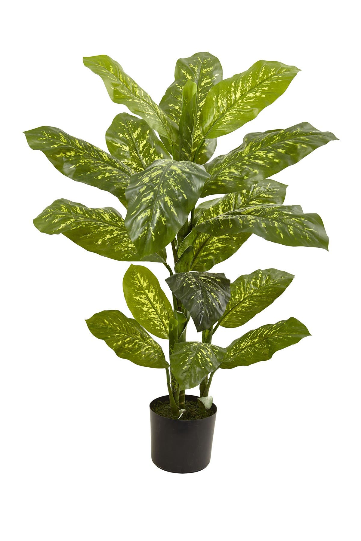 Image of NEARLY NATURAL 4ft. Dieffenbachia Plant - Real Touch