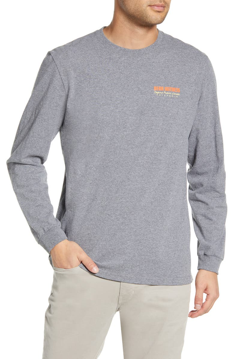 PATAGONIA See and Believe Long Sleeve Responsibili-Tee<sup>®</sup> Graphic T-Shirt, Main, color, GRAVEL HEATHER