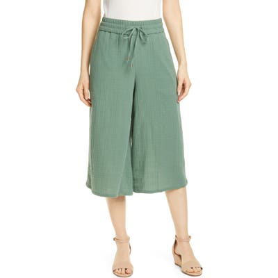 Petite Eileen Fisher Organic Cotton Culottes, Green